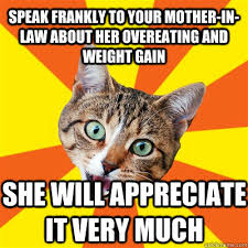 Overeating Meme - speak frankly to your mother in law cat meme cat planet cat planet