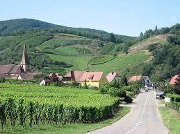 Alsace, terre de grands vins