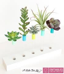 Test Tube Flower Vases Craftaholics Anonymous Diy Test Tube Bud Vase