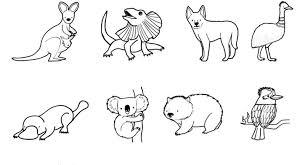 imagenes animales australia de australia dibujo para colorear e imprimir