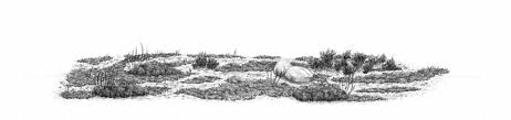 How To Draw Landscapes by How To Draw Grass Ground And Rocks