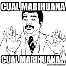 Ay Si Ay Si Meme Generator - meme ay si cual marihuana cual marihuana 4188331