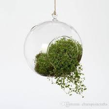 2017 hanging glass globe vase air plant terrarium set garden