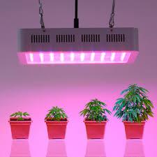 indoor garden led grow lights k k club 2017
