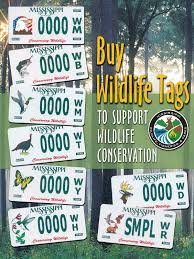 Mississippi Wildlife images Wildlife car tags jpg