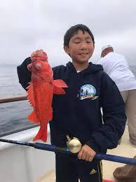 Cape Cod Kids Fishing - channel islands sportfishing fishing whale watching