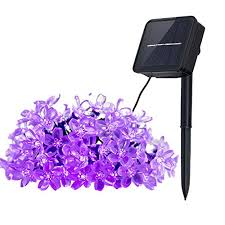 String Of Flower Lights by Best Solar Powered String Lights Top 5 Reviews