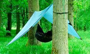 useful camping tips simple shelter hammock and tarp