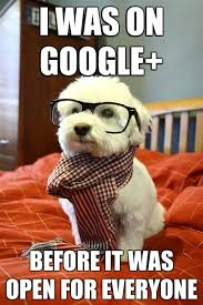 Google Plus Meme - image 143081 google plus google know your meme