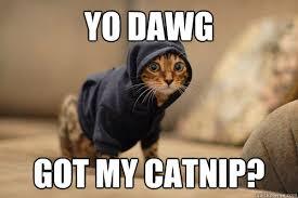 Almost Friday Meme - you got my chronic the chronic catnip company