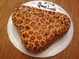 Leopard Print Speedo Cake Bakearama