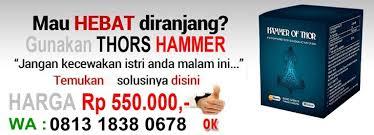 081318380678 apotik pt agen jual hammer of thor asli di kota jepara