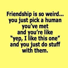best 25 friendship quotes ideas on
