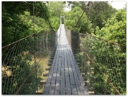 The terrifying swinging bridge in oklahoma that will make your