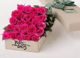 hot pink roses fresh roses hot pink flowers online florist new york