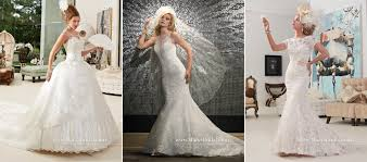 wedding dresses sarasota 10 plus one tips for choosing your wedding dress