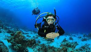 Mississippi snorkeling images Learn to scuba dive scuba equipment roud island divers