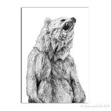 grizzly bear illustration u0027 signed art print by fawn u0026 thistle