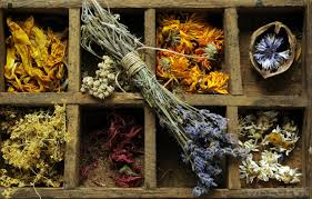 dried flowers what are the best tips for dried flower arranging