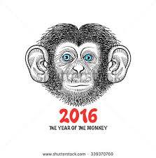 hand drawn sketch style illustration monkey stock vector 294689003