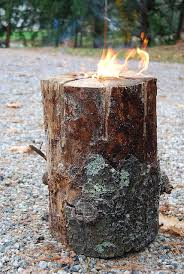 Scented Fireplace Logs by Diy Fire Log Burns From The Inside Out Would Be Great For