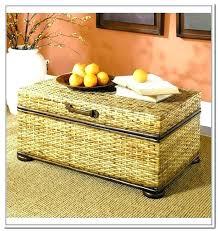 resin wicker storage chest u2013 edueast info