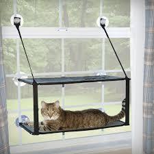 Shop Amazon Com Window Double by Amazon Com K U0026h Pet Products Ez Mount Window Pod Kitty Sill Tan