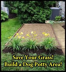 Backyard Ideas For Dogs 98 Best Oreo U0027s Care Images On Pinterest Kennel Ideas Dog And