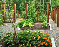combining vegetables and flowers in your garden diy trends