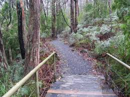 Mt Lofty Botanic Gardens Nature Trail Mt Lofty Botanical Gardens Find A Place To Walk