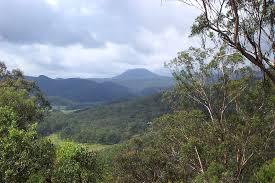Monts Watagan