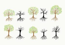 tree roots free vector 5469 free downloads