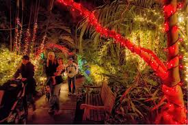guide to christmas celebrations in san diego california