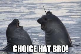 Seal Meme Generator - ideal seal meme generator seal hat imgflip kayak wallpaper