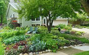 Front Yard Vegetable Garden Ideas Sumptuous Design Inspiration Front Yard Vegetable Garden Town Bans