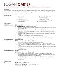 summary for resume personal summary resume megakravmaga