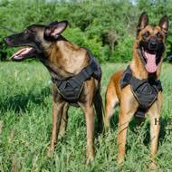 belgian shepherd uk buy malinois harness uk belgian malinois harnesses sale