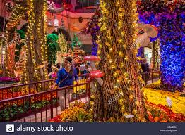 Botanical Gardens Bellagio by Las Vegas Oct 05 Fall Season In Bellagio Hotel Conservatory