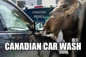Moose Meme - ahah what the hell test squadron premier star citizen