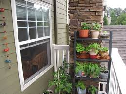 types balcony herb garden ideas 722 hostelgarden net