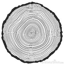 vector conceptual background with tree rings reveal