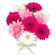flowers online flowers online flower delivery sydney the flower