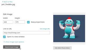 upload add and edit images in campaigns mailchimp
