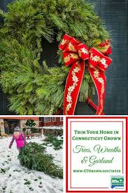 49 best ct grown christmas trees images on pinterest farms