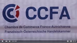 chambre de commerce franco autrichienne la ccif autriche ccfa se présente dans une vidéo de 5 min