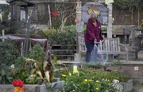 Urban Gardens San Francisco - 2014 resolution s f urban garden expansion sfgate