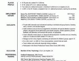 sle professional resume template resume templates career coachme commonpence co coaching sle
