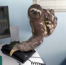 Sloth Meme Jokes - sloth secretary see i can work in my slothing mode lol to my