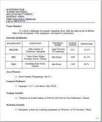 biodata format word format best 25 resume format for freshers ideas on pinterest resume