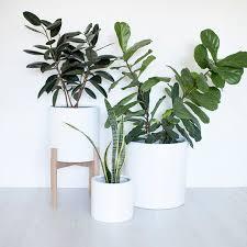 terrarium design glamorous white indoor pots large indoor